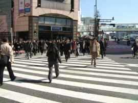 Normas y comportamientos con los peatones